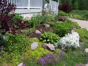 Perennial flower bed with black mulch